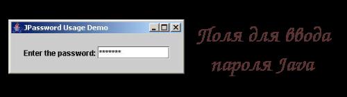 Поля для ввода пароля Java