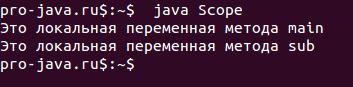 Область видимости переменной в Java