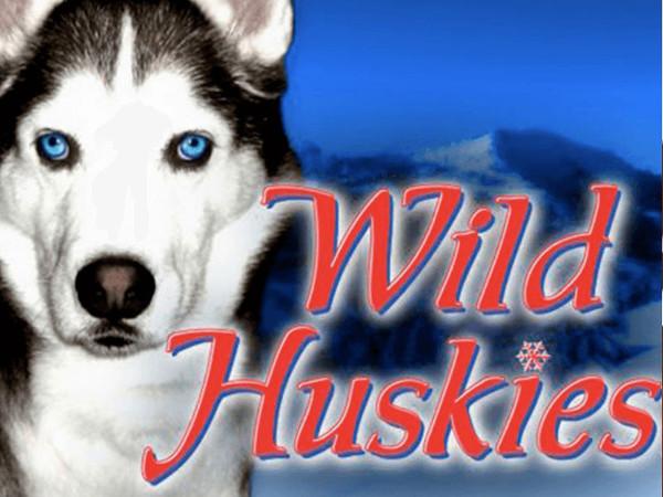 Игровой автомат Wild Huskies - щедрые бонусы и незабываемые выигрыши в казино Вулкан